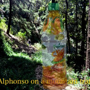 Alphonso on a mountain trail
